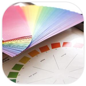 色彩折々の紙と相関図