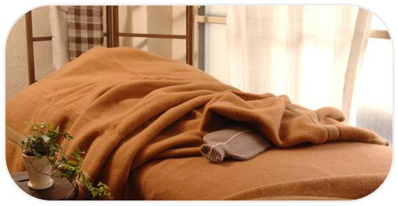 茶色い毛布とベッドシーツ