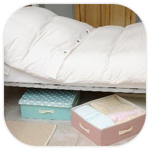 ベッド下の収納も可能