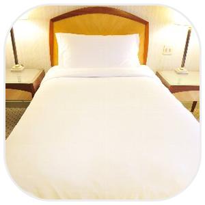 豪華なシングルベッド